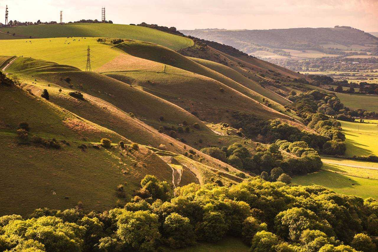South downs national park campaign landscape events for Nearby landscapers