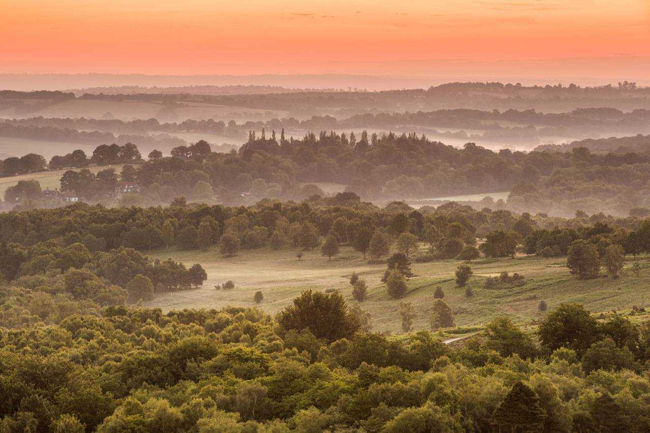 Ashdown Forrest Sunrise 2